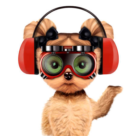 earphone: Funny dog with earphones and protective goggles