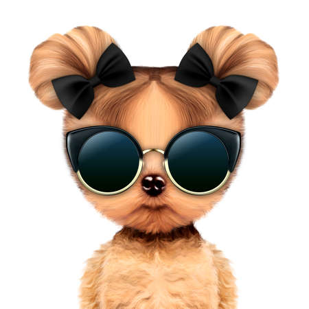 Funny adorable doggy girl with glamour sunglasses Stock Photo