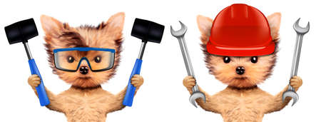 Funny dogs with wrench and hammer