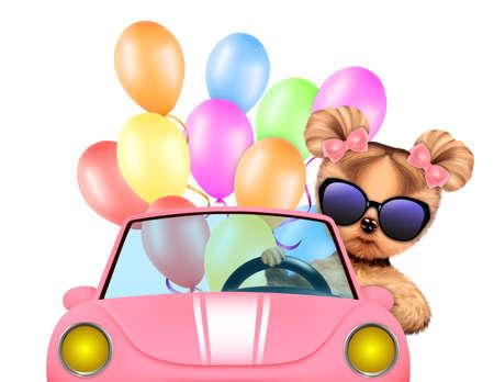 dog: Funny animal sitting in a car