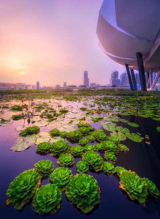 싱가포르의 스카이 라인 배경