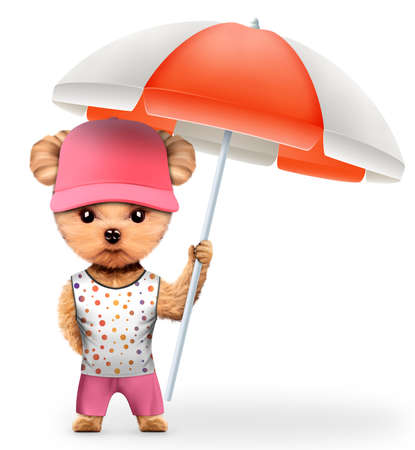 dog grooming: Animal in t-shirt and shorts holding umbrella Stock Photo