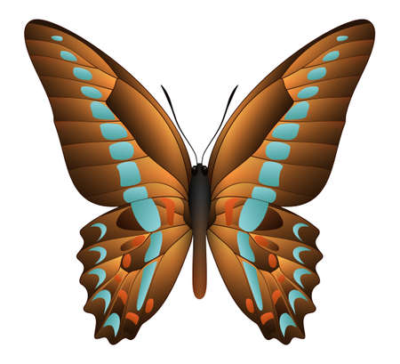 Beautiful butterfly isolated on a white background. Graphium sarpedon or blue triangle butterfly. 3D illustration