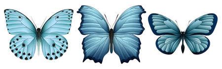 Realistic butterflies