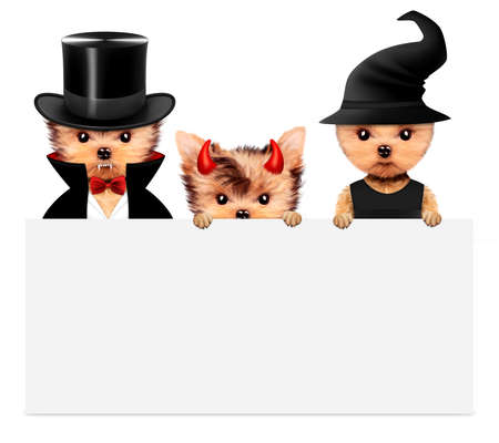 Dracula, devil and witch. Halloween and Dead day Stock Photo