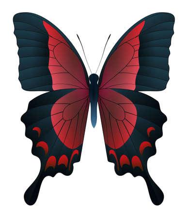 Hermosa mariposa aislada en un fondo blanco. Papilio mariposa pericles. Ilustración 3D
