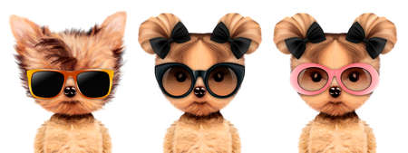 Funny adorable doggy with elegance sunglasses, isolated on white. Vacation concept. Realistic 3D illustration