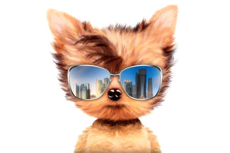 Funny adorable dog wearing sunglasses isolated on white background. Holiday and vacation concept. Realistic 3D illustration