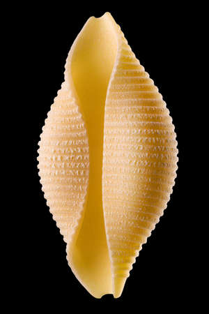 Macro photo of conchiglie pasta shell isolated on black background