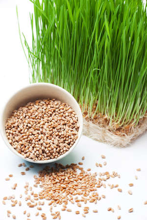 wheat grass and wheat in bowl composition