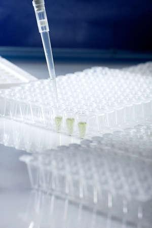 amplification: Tubes en plastique pour l'amplification de l'ADN et le chargement pipette Banque d'images