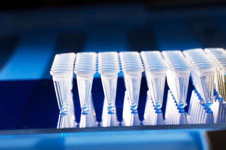 amplification: Tubes en plastique pour l'amplification d'ADN Banque d'images