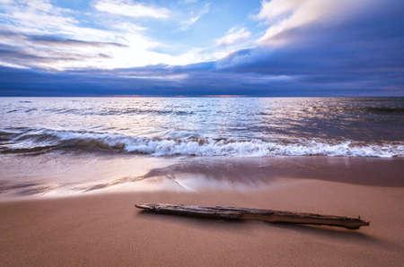 Mer tranquille avec du bois flotté. Mouvement de vague doux sur une plage de sable lumineux. Fond de paysage marin avec un magnifique espace de copie.