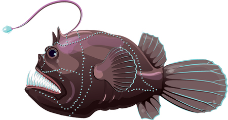 nature one painted: Deep sea anglerfish, isolated on white, vector illustration, eps-10