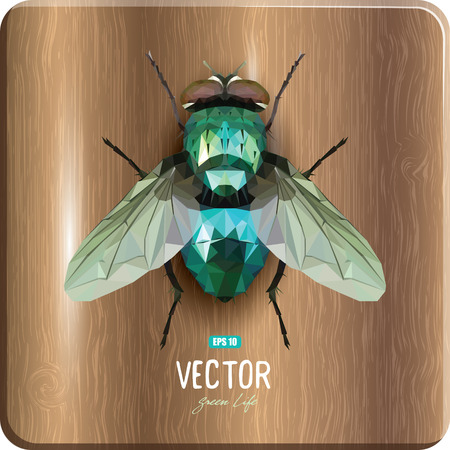 Emerald polygonal fly sitting on a wooden surface, vector illustration, eps-10