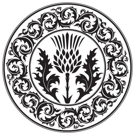 Flor de cardo y el ornamento de cardo hoja redonda. El símbolo de Escocia, aislado en blanco, ilustración vectorial Ilustración de vector