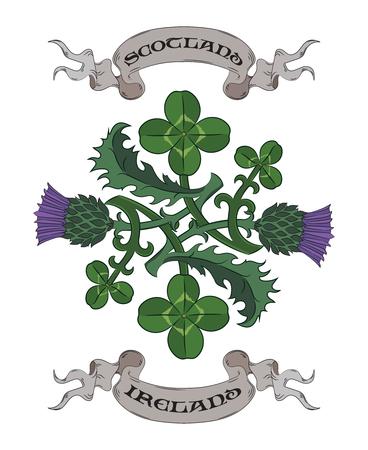 アザミとクローバー。アイルランドとスコットランドのシンボル ベクトル イラスト  イラスト・ベクター素材