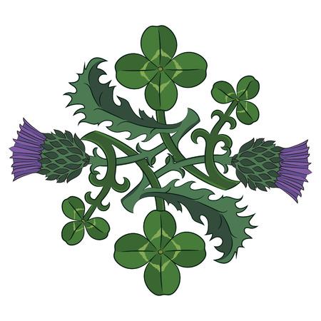 Chardon et trèfle. Les symboles de l'Irlande et l'Écosse vector illustration