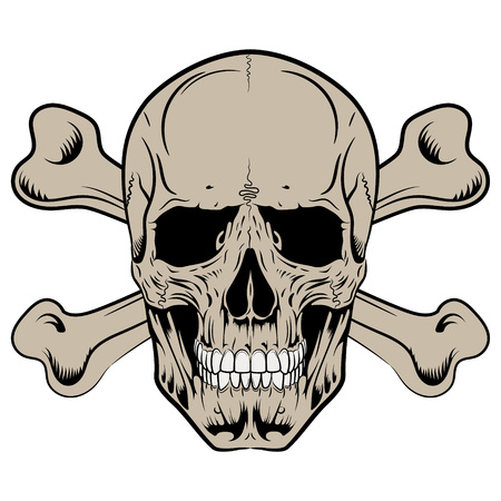 Human skull and crossbones, isolated on white, vector illustration Illustration