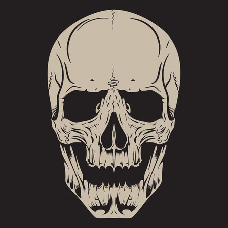 Human skull, drawn by hand, isolated on black, vector illustration