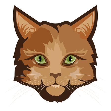 Fluffy ginger cat, isolated on white, vector illustration Illustration