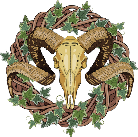Aries bighorn skull and Rattan wreath entwined with ivy, isolated on white, vector illustration, eps-10