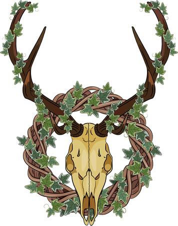 Deer skull and Rattan wreath