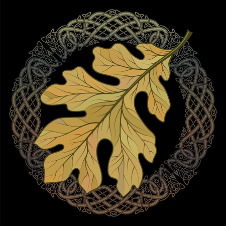 Oak leaf in autumn coloring and Celtic magic ornament Illustration