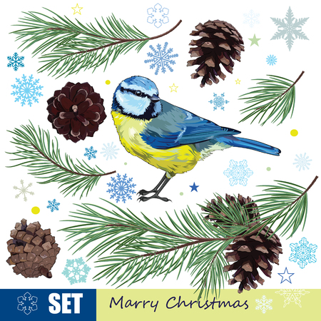 chickadee: Christmas set. Titmouse, pine branch with cones and the snowflakes, isolated on white, vector illustration Illustration