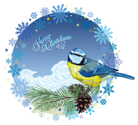 chickadee: Christmas card design with bird sitting on pine branch