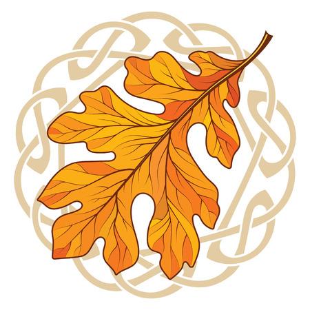 Oak leaf in autumn coloring and Celtic magic ornament for Christmas item decoration Çizim