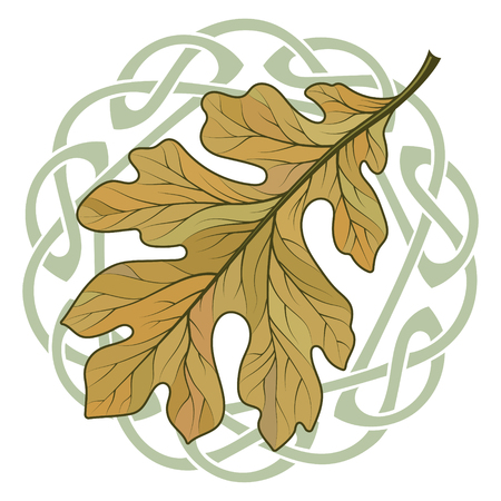 Oak leaf in autumn coloring and Celtic magic ornament Stock Photo