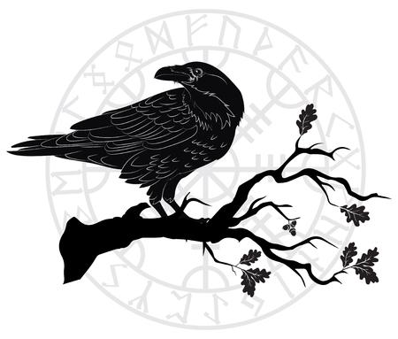 Cuervo negro sentado en una rama de un roble y runas escandinavas, aislado en blanco, ilustración vectorial