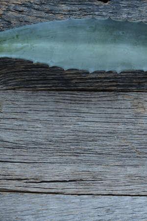 Aloe Vera Leaves on Wood Background