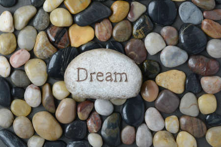 single word: Flush Pebble Stone and River Background with the word Dream on single rock