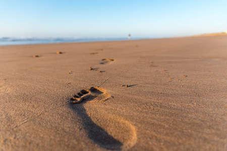 Path, a peaceful walk in golden beach sand