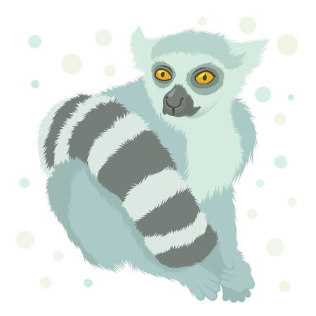 ring tailed lemur Stock Vector - 15474185