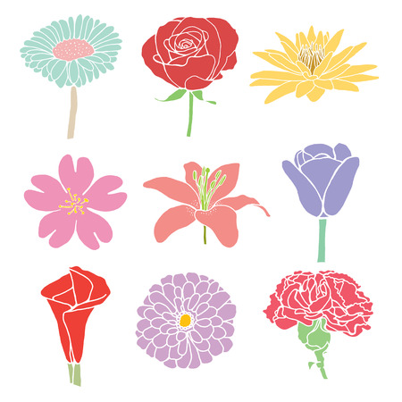 colorful flowers vector illustration  isolated Vector