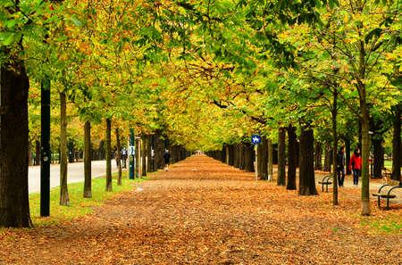 Walk in the autumn park in Vienna, Austria. Editorial