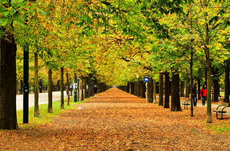 Walk in the autumn park in Vienna, Austria.