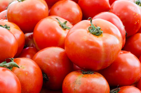 domates: red tomatoes at the market Stock Photo