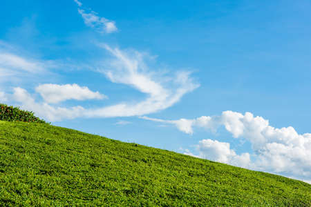 grassy knoll: grassy knoll with blue sky Stock Photo