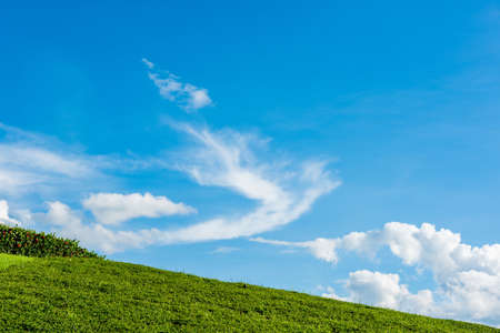 knoll: grassy knoll with blue sky Stock Photo