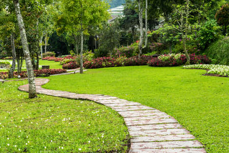 backyard: Landscaping in the garden. The path in the garden. Stock Photo