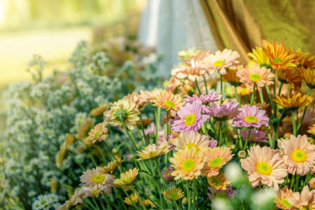petunia wild: Beautiful flowers in wedding accessory