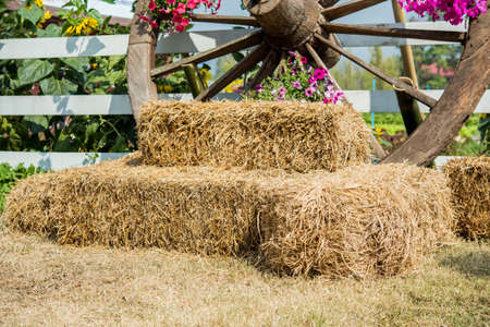 Straw bales with wagon wheels Stock Photo