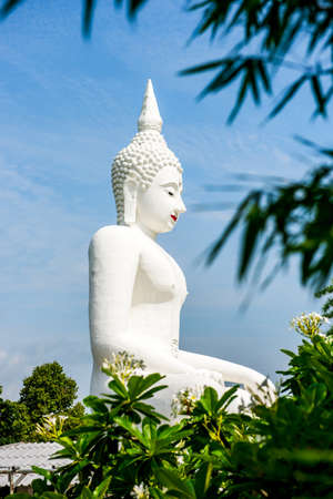 mea: White Buddha statue in Wat Chom tham at mea on in chiang mai, Thailand