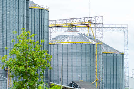 agriculture industrial: Production, Industrial buildings, agriculture wheat silos
