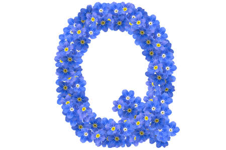 flower alphabet Stock Photo - 8083894
