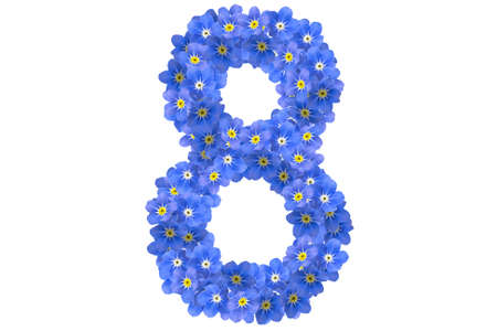 flower number photo